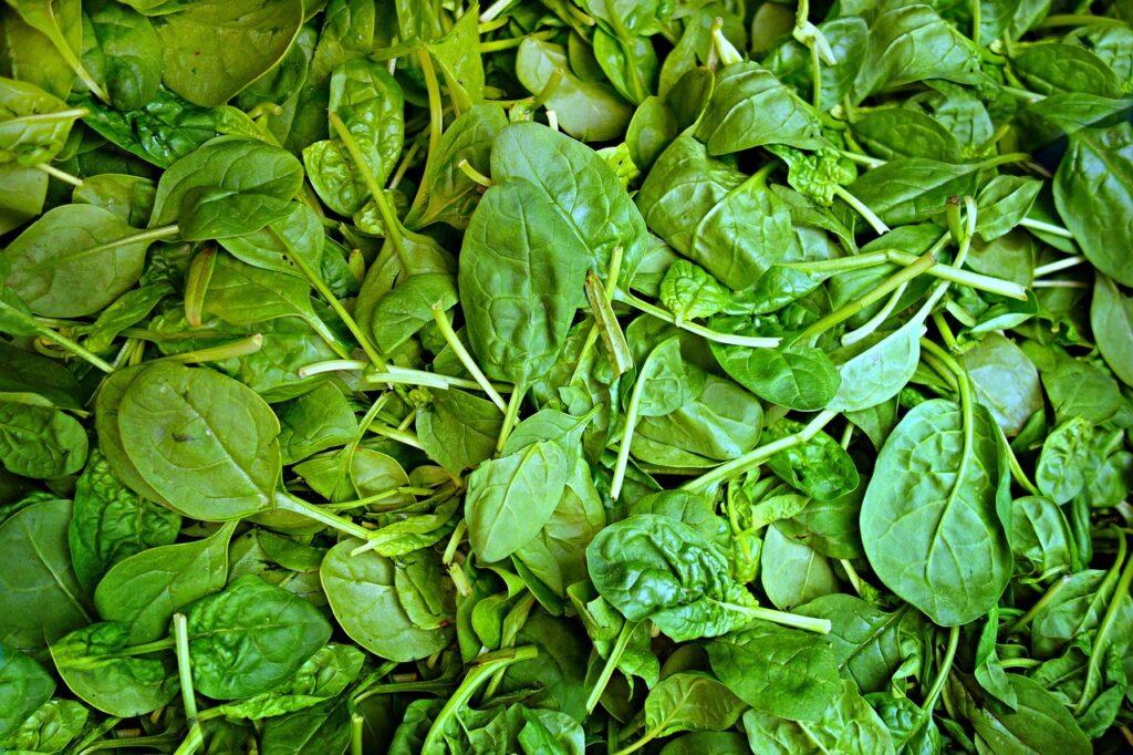 spinach, vegetable, fresh vegetable